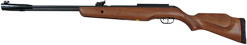 Gamo CFR Whisper Royal_sm.jpg