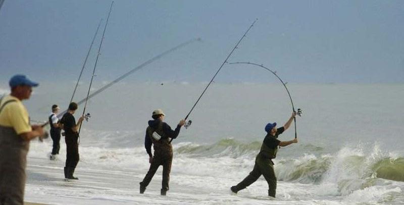 много мужиков ловит рыбу